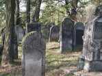 Cmentarz żydowski w Krzykawce
